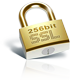 Secure, 256-bit encryption for all modern browsers.